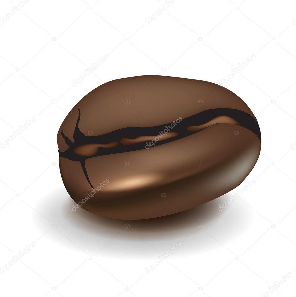 Single coffee bean — Stock Vector © corneliap #7545182