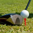 Golf ball and driver — Stock Photo