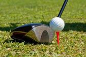高尔夫球场球和驱动程序 — 图库照片