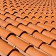 Roof Tiles — Stock Photo