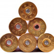 Shotgun shells — Stockfoto