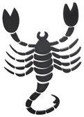 Skorpion - skorpion — Zdjęcie stockowe