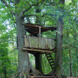 Tree house - Baumhaus — Stock Photo