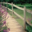 Wooden foot bridge with wild flowers — Stock Photo