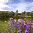 Spring landscape with lake and flowers - Stock Photo