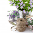 Garden equipment with violet flowers and green leaves - Stock Photo