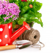 Spring flowers with garden tools — Stock Photo #10545112