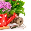 Spring flowers with garden tools - Stock Photo