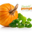 Yellow pumpkin vegetable with green leaves - Stockfoto