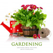 Spring flowers with garden tools — Stock Photo