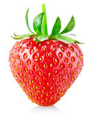 Strawberry berry with green leaf — Foto de Stock