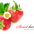 Strawberry berry with green leaf and flower — Stock Photo #11010969