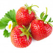Strawberry berry with green leaf and flower — Stock Photo #11100451