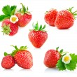 Set strawberry berry with green leaf and flower — Stock Photo
