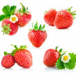 Set strawberry berry with green leaf and flower — Fotografia Stock  #11258389