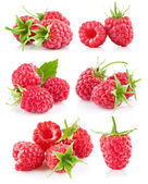 Set raspberry with green leaf — Stock Photo