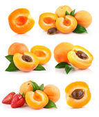 Set apricot fruits with green leaf — Stock Photo