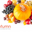 Autumnal fruits with yellow leaves — Stock Photo