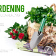 Garden equipment with flowers and green plants - Stock Photo