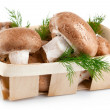 Fresh mushrooms in basket with leaves dill — Stock Photo