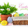 Easter eggs in basket with spring flowers — Stock Photo
