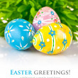 Easter eggs in the green grass — Stock Photo