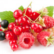 Set fresh berries with green leaf — Stockfoto #9451056