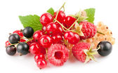 Set fresh berries with green leaf — Stock Photo
