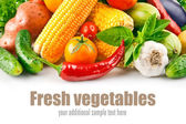 Fresh vegetable with leaves — Stock Photo