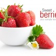 Strawberry berry with green leaf and flower - Stock Photo