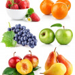 Set fresh fruits with green leaves - Stockfoto