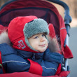 Stock Photo: Wrapped baby boy in red stroller