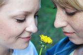 Two beautiful women with dandelion — Stock Photo