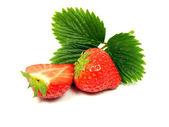 Frutas isolado de morangos frescos — Foto Stock