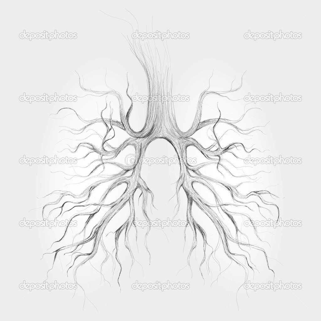 Tree - Lungs of the Earth  / Realistic vector sketch  — Stock Vector #6775288