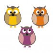 Funny colorful owls vector illustration isolated on white background — Stock Vector