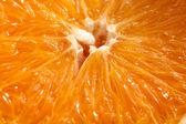 Orange macro — Stock Photo