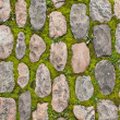 Stone paving with moss — Stock Photo