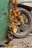 Listy a košík — Stock fotografie