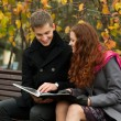 Young happy couple with book on the bench — Stock Photo #7199987