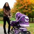 Happy mom with pram — Stock fotografie