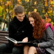 Stok fotoğraf: Young couple is considering book