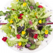 Stock Photo: Salad of flowers