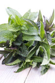 Fresh mint leaves isolated — Stock Photo