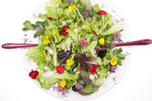 Salad of flowers — Stock Photo