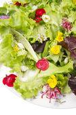 Salad of flowers — Stock Photo