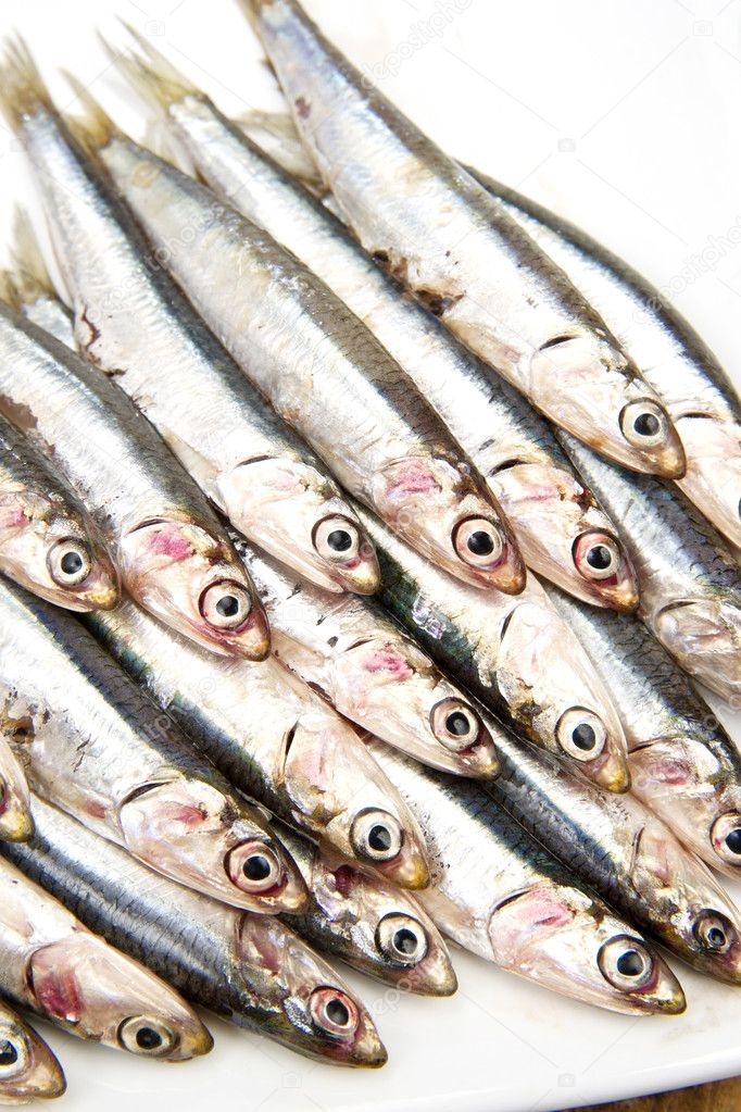 Fresh anchovies — Stock Photo #6920865