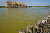 Valleys of Comacchio — Stock Photo