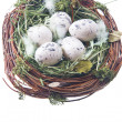 Quail eggs in hay - Stock Photo