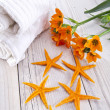 Spa spring flowers - Stockfoto